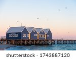 Pigeons Over Busselton Jetty...
