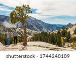 Yosemite  California  Usa  ...