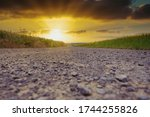 Low View Of A Field Path During ...