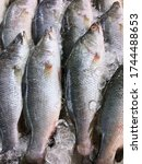 Many Sea Bass Are Sold In The...