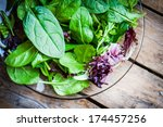 fresh green salad with spinach... | Shutterstock . vector #174457256
