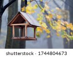 Feeder For Birds In The Autumn...