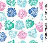 imprints herbs  flowers and... | Shutterstock .eps vector #1744849289