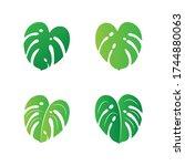 tropical monstera leaves vector ... | Shutterstock .eps vector #1744880063