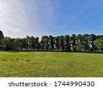 Avenham And Miller Park....