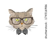 portrait of a cat with bow tie... | Shutterstock .eps vector #174516986