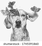 Monochrome Portrait Of A Dog...