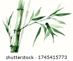 Green Bamboo Tree With Leaves....
