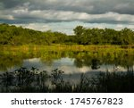 Pre Delta National Park Wetlan...