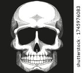 skull. black and white drawing. ... | Shutterstock .eps vector #1745976083