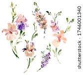 watercolor floral flower... | Shutterstock . vector #1746001340