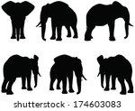 eps 10 set of editable vector...   Shutterstock .eps vector #174603083