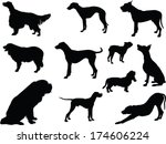 dogs collection   vector | Shutterstock .eps vector #174606224