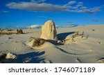 Desert landscape of gypsum dunes, plant roots pinned sand at White Sands National Monument in New Mexico, USA