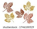 leaf imprints. leaves set... | Shutterstock .eps vector #1746100529