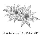 hand drawn bunch with lily... | Shutterstock .eps vector #1746155909