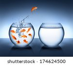 Goldfish Jumping Out Of The...