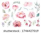 watercolor drawing elements of... | Shutterstock . vector #1746427019