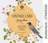 spring elegant vector vintage... | Shutterstock .eps vector #174645260