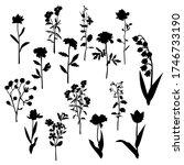 set of silhouette flowers rose  ... | Shutterstock .eps vector #1746733190