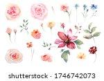 watercolor drawing elements of... | Shutterstock . vector #1746742073