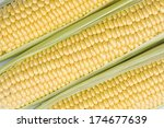 close up of three raw corn ears | Shutterstock . vector #174677639