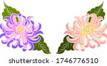 colorful flower with... | Shutterstock .eps vector #1746776510