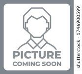 picture coming soon image icon | Shutterstock .eps vector #1746900599