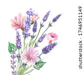 cute bouquet with pink flowers...   Shutterstock . vector #1746951149