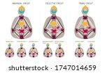circuitry. human design...   Shutterstock .eps vector #1747014659