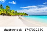 coconut palm trees against blue ... | Shutterstock . vector #1747032350