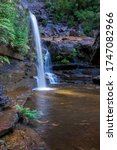 Tropical waterfall in the forest. Nature background. Wentworth falls waterfall in Blue Mountains, Australia