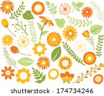 flowers and foliage | Shutterstock .eps vector #174734246