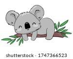 Koala On The Tree Branch. Hand...
