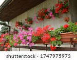 Balcony Decorated With Colorful ...