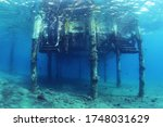 View Of The Underwater...