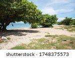 Cramer's Park Beach Area With...