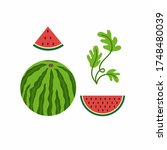 national watermelon day on... | Shutterstock .eps vector #1748480039