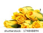 Yellow Roses With Water Drop...