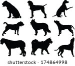 Stock vector dog collection vector 174864998