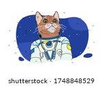 illustrations of a cat... | Shutterstock . vector #1748848529