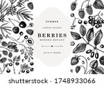 summer fruits  berries and... | Shutterstock .eps vector #1748933066