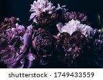 Beautiful Violet Peonies...