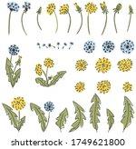 Dandelion Flower Childish...