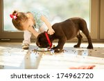 Stock photo beautiful little girl watching her puppy eat in the living room 174962720