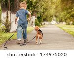 Stock photo let s play together boy walk with beagle puppy 174975020