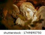 Death. Close Up Stone Statue O...