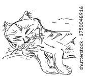 cat sketch portrait  silhouette ... | Shutterstock .eps vector #1750048916