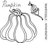 vector drawing of pumpkins.... | Shutterstock .eps vector #1750116446