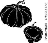 vector drawing of pumpkins.... | Shutterstock .eps vector #1750116470